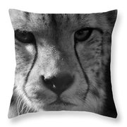 Cheetah Black And White Throw Pillow