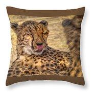 Cheetah Cattitude Throw Pillow