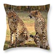 Cheetah Chat 2 Throw Pillow