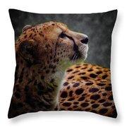 Cheetah Closeup Portrait Throw Pillow