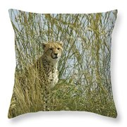 Cheetah Cub In Grass Throw Pillow