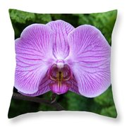 Cheetah In The Orchid Throw Pillow