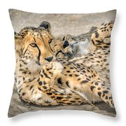Cheetah Lounge Cats Throw Pillow