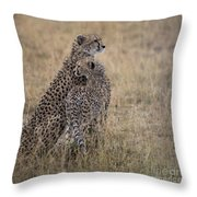 Cheetahs Throw Pillow