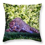 Cheetahs In Love Throw Pillow