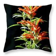 Cheeto Plant Portrait Throw Pillow