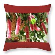 Chenille Caterpillar Plant Throw Pillow