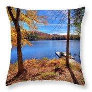 Cherished View Throw Pillow