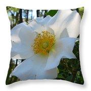 Cherokee Rose 1 Throw Pillow