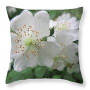 Cherokee Rose At The Farm Throw Pillow