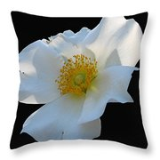 Cherokee Rose On Black Throw Pillow