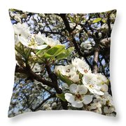 Pear Blossom Throw Pillow