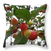 Cherries In The Morning Rain Throw Pillow