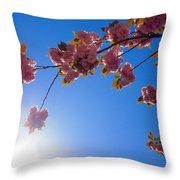 Cherries In The Sky Throw Pillow
