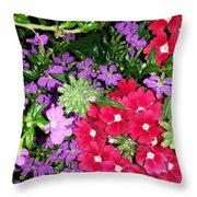 Cherry And Grape Throw Pillow