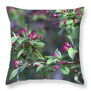 Cherry Blossom Blooms Throw Pillow