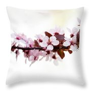 Cherry Blossom Branch Throw Pillow