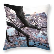Cherry Blossom Breeze Throw Pillow