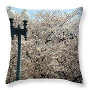 Cherry Blossom Festival Throw Pillow