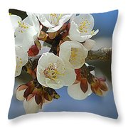 Apricot Blossom IIi Throw Pillow
