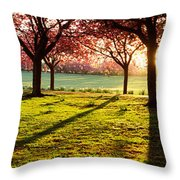 Cherry Blossom In A Park At Dawn Throw Pillow