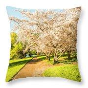 Cherry Blossom Lane Throw Pillow
