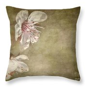 Cherry Blossom Throw Pillow by Meirion Matthias