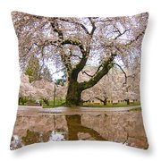 Cherry Blossom Reflection Throw Pillow