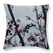 Cherry Blossom Transparency Throw Pillow