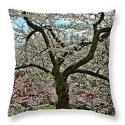 Cherry Blossom Trees Of Branch Brook Park 31 Throw Pillow