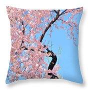 Cherry Blossom Trilogy IIi Throw Pillow