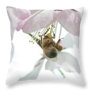 Cherry Blossom With Bee Throw Pillow