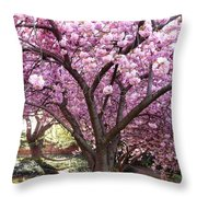 Cherry Blossom Wonder Throw Pillow