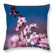 Cherry Blossoms 3 Throw Pillow