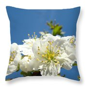 Cherry Blossoms Art White Spring Tree Blossom Baslee Troutman Throw Pillow