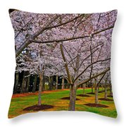 Cherry Blossoms At The Beach Throw Pillow
