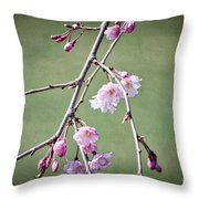 Cherry Blossoms In Early Spring Throw Pillow