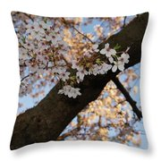 Cherry Blossoms Throw Pillow by Megan Cohen