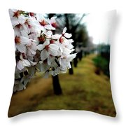 Cherry Blossoms Trail Throw Pillow