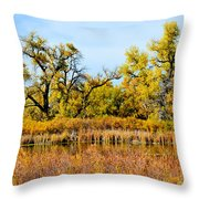 Cherry Creek Pond In Autumn Throw Pillow