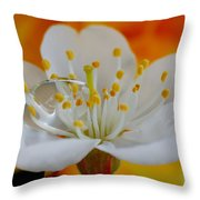 Cherry Flower In The Spring Throw Pillow