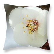 Apricot Flowers II Throw Pillow