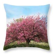 Cherry Grove Throw Pillow