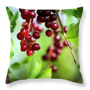 Cherry Jubilee Throw Pillow