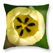 Early Opener Throw Pillow