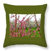 Cherry 'n' Apple Blossoms Throw Pillow