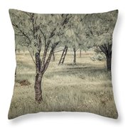 Cherry Orchard In Infrared Throw Pillow