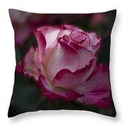 Cherry Parfait Rose Throw Pillow