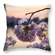 Cherry Pedals Throw Pillow