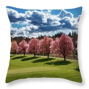 Cherry Tree Bloom Color Throw Pillow